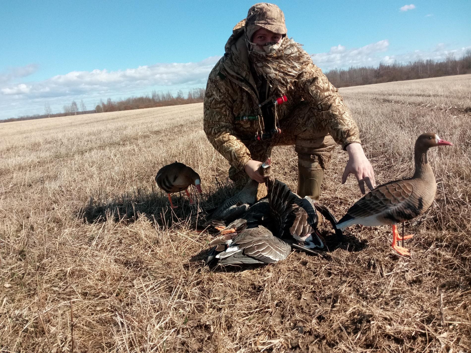 открытие охоты на утку в ульяновске картинка какого типа стоит